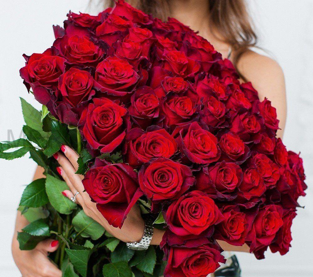 Букет из роз 101 шт, Эквадор (красные)