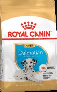 Royal Canin Dalmatian Junior Корм для щенков далматина (12 кг)