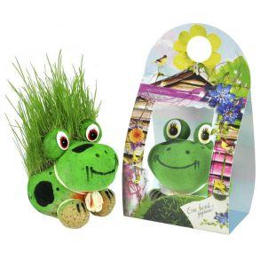 травянчик лягушка-1 (11)