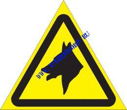 Осторожно. Злая собака