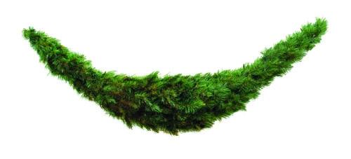 Триумф сваг Лесная Красавица 180*36 см зеленая