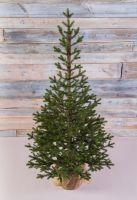 Искусственная елка Прованс 155 см зеленая