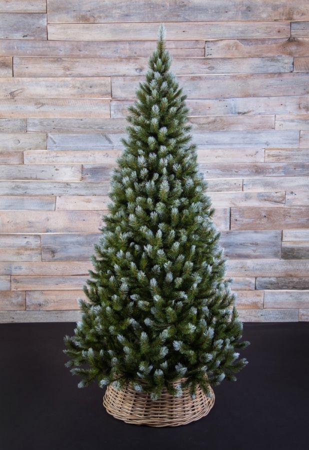 Искусственная елка Женева 260 см заснеженная