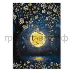Книжка зап.Феникс+ А6+ Яркая луна 80л.тв.переплет клетка 48345