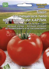 Томат Монгольский Карлик Уральский Дачник,