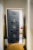 Наклейка на дверь - Источник звука | магазин Интерьерные наклейки