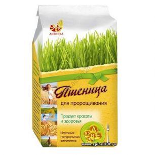 Пшеница для проращивания, 500 гр