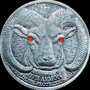 500 тугриков 2014 Монголия БАРАН серебрение. Копия Красная книга цветные глаза