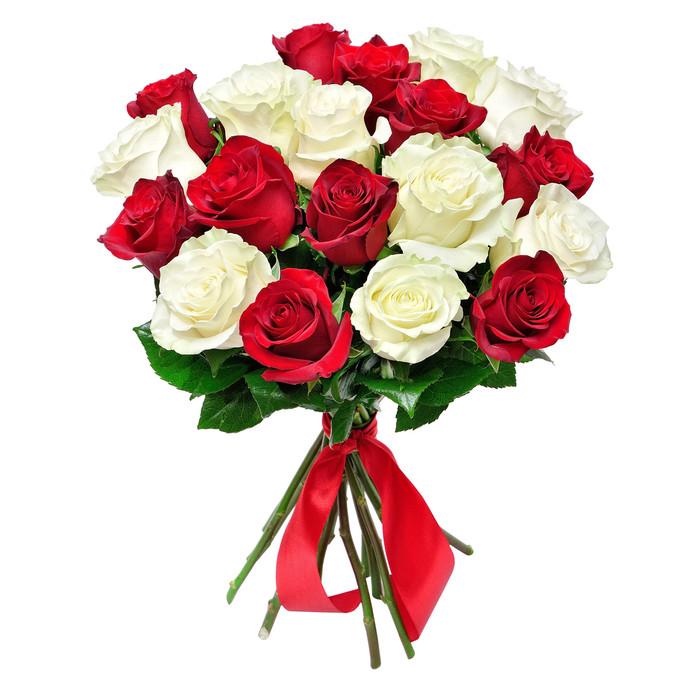 Розы красные и белые 50 см