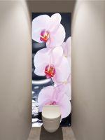 Фотообои в туалет - SPA Орхидеи магазин Интерьерные наклейки