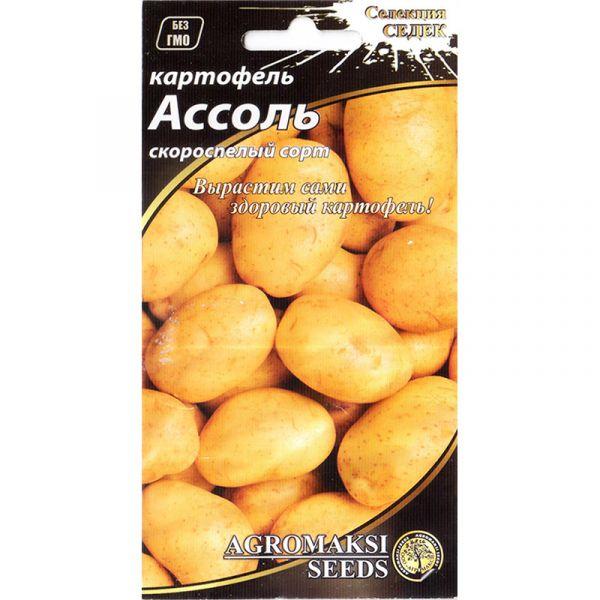 """Ассоль"" (0,01 г) от Agromaksi seeds"