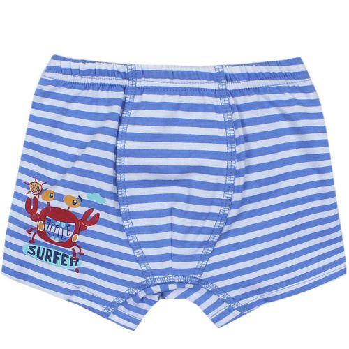 "Трусы-боксеры для мальчика Bonito kids 3-7 лет ""Surfer"" голубые"