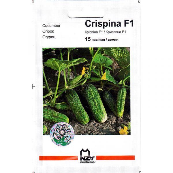 """Криспина"" F1 (15 семян) от Nunhems"