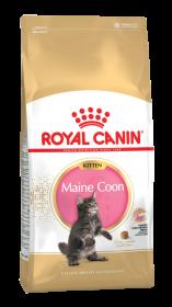 Роял канин Киттен Мэйн Кун 36 (Kitten Maine Coon)