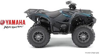 Квадроцикл Yamaha Grizzly 700 SE 2020 (серый)