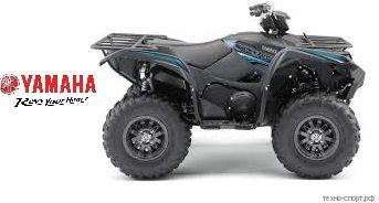 Квадроцикл Yamaha Grizzly 700 SE 2020 (серый)