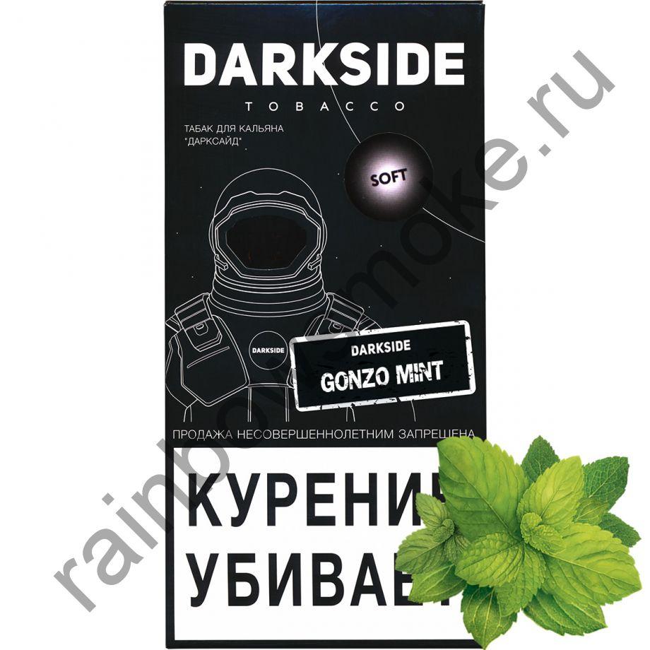 DarkSide Soft 250 гр - Gonzo Mint (Сумасшедшая мята)