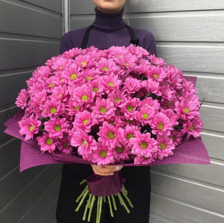Букет из 35 розовых хризантем