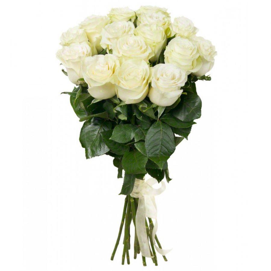 Белые розы с крупным бутоном, 70 см, от 11 шт