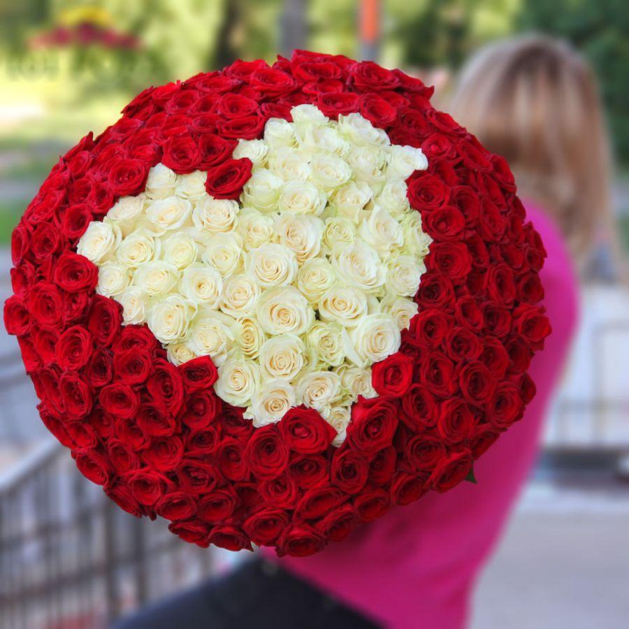 201 роза в виде сердца