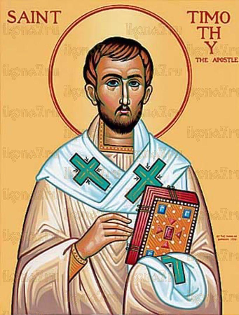 Икона Тимофей Сицилийский преподобномученик