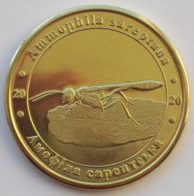 Аммофила сарептская 1 злотнык 2020 Серия Красная Книга Украины