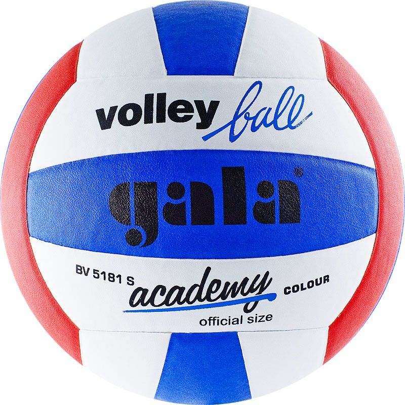 Волейбольный мяч GALA Academy