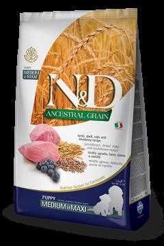 N&D Low Grain Lamb & Blueberry Puppy Medium/Maxi (ягнёнок+черника для щенков средних и крупных пород)