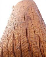 Скульптура деревянного волка была пропитана тунговым маслом и тунговым маслом с добавлением твёрдого воска. Дерево не изменилось спустя 1,5 года.