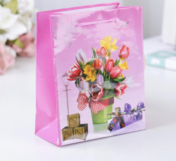Пакет подарочный 15*23