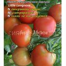 tomat-karlik-nos