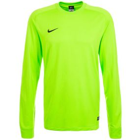 Вратарский свитер Nike Park II Goalie салатовый