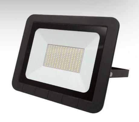 Прожектор светодиодный ЭРА PRO LPR-061-0-65K-100 100Вт 9500Лм 6500К
