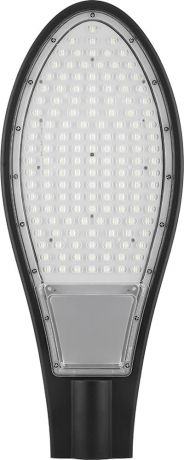 Уличный светодиодный светильник 30LED*30W AC230V/ 50Hz цвет черный (IP65), SP2925
