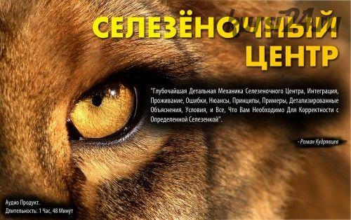 Селезеночный центр (Роман Кудрявцев)