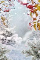 [livemaster] Фотошаблон. Зимний портрет (DigitalArtStudio)