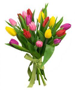 Тюльпаны букет 15шт в ассортименте
