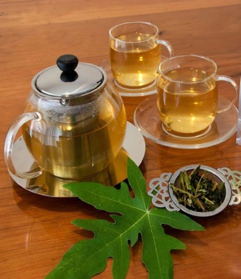 Чай из листьев папайи 30 гр