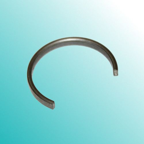PT450-P18 Кольцо удерживающее