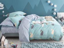 Постельное белье Сатин SL 2-спальный Арт.20/489-SL