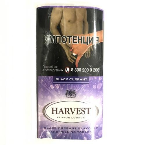 Harvest Black Currant