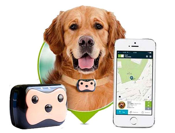 GPS трекер для животных Pet GPS Tracker