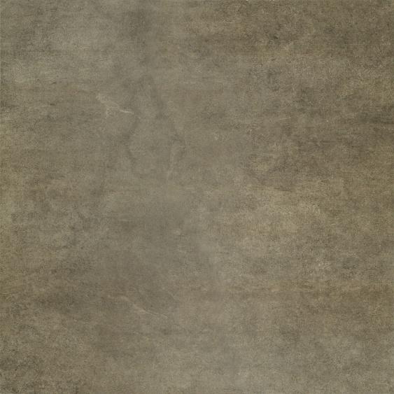 Arkadia brown PG 01