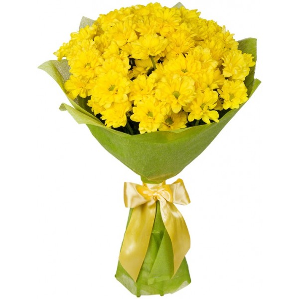 Ромашки (букет из желтых хризантем)