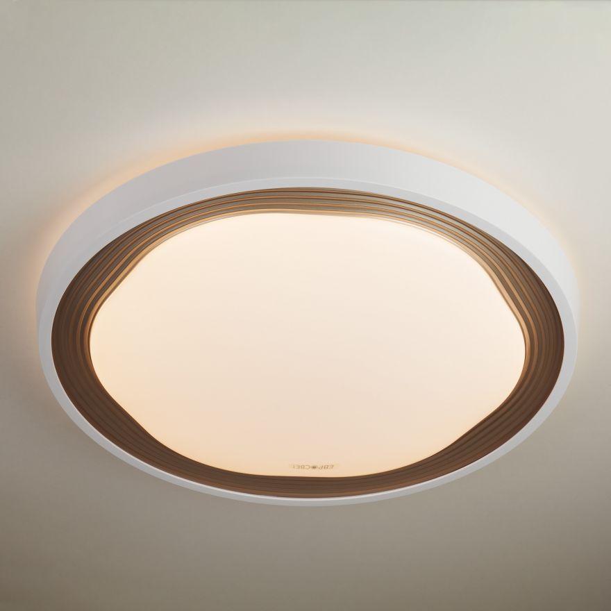 Светильник светодиодный управляемый Elektrostandard 40006/1 LED кофе