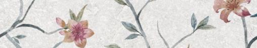 Olezia grey light border 01