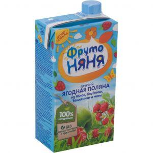 Напиток Фрутоняня 0,5 л из смеси фруктов и ягод с экстрактом мяты т/п дп