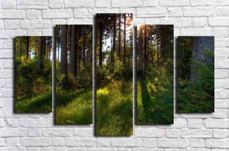 Модульная картина Пейзажи и природа 112