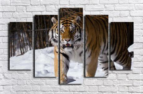 Модульная картина Животные 27