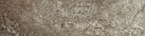 Bellini brown PG 01